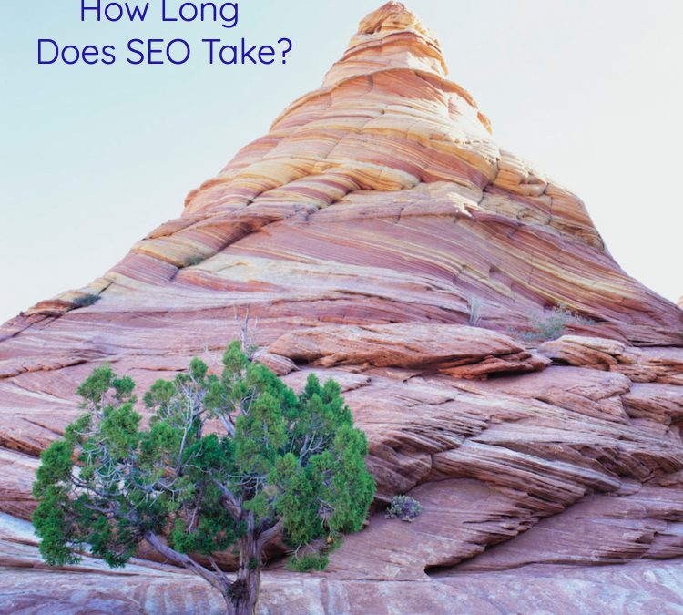 How Long Does SEO Take?